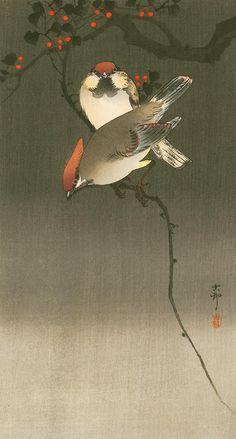 "Ohara Koson ""Starlings and Cherry Tree"" woodblock print Japanese Artwork, Japanese Painting, Japanese Prints, Japan Illustration, Ohara Koson, Art Chinois, Korean Painting, Art Asiatique, Art Japonais"