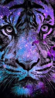 Tiger Bling Wallpaper… By Artist Unknown… Tiger Bling Wallpaper. By Artist Unknown. Tiger Wallpaper, Bling Wallpaper, Animal Wallpaper, Big Cats Art, Cat Art, Cute Animal Drawings, Cute Drawings, Drawing Faces, Colorful Animals