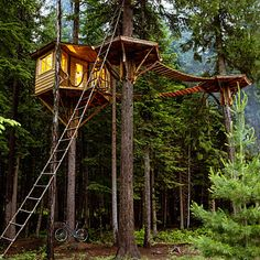 Treehouse Home Rental in Burlingame  - Silicon Valley Hotels - Sunset