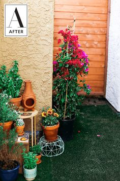 Before & After: A Budget and Renter Friendly Patio Makeover | Apartment Therapy