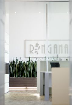 RINGANA fresh cosmetics - presented by Naturessenzen Fresco, Creating Positive Energy, Living A Healthy Life, Young Living Essential Oils, Skin Care, Cosmetics, Short Hair, Wordpress, Beauty