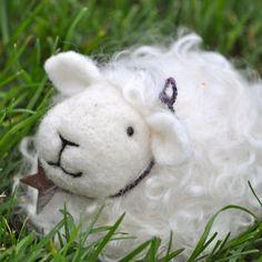 needle felted sheep kit, so cute.