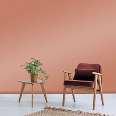 Sienna, meaning a earthy pigment commonly used in paintings inspired creation of this shade. Peach Paint Colors, Room Paint Colors, Bedroom Wall Colors, Bedroom Ideas, Graham Brown, Paint Shop, Pink Walls, Colour Schemes, House Painting