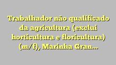 Trabalhador não qualificado da agricultura (exclui horticultura e floricultura) (m/f), Marinha Grande