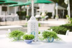 simple green centerpiece with blue and white bowls