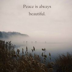"""""""Peace is always beautiful.""""  ― Walt Whitman, Leaves of Grass.  Click on this image to see the most sophisticated collection of inspiring quotes!"""