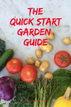 Are you dreaming of vegetable gardening this year, but getting overwhelmed by everything there is to know? Beginner gardeners rejoice! The Quick Start Garden Guide has the tips you need to know about planting vegetables. Whether you're container gardening, or starting a plot in your backyard, you'll be growing in no time. #gardening #beginnergardener #gardeningtips #diygardener #gardeningguide #vegetablegarden #growingvegetables