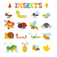 Vector set of cartoon insects. Colorful bugs collection royalty-free stock vector art