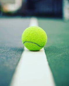 Tennis Trophy, Tennis Gear, Lawn Tennis, Tennis Clubs, Tennis Pictures, Wimbledon Tennis, Sports Games, Instagram, Sports