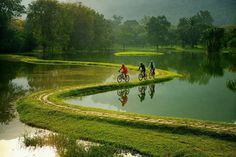 Bicycle Trail in the suburbs of Rio de Janeiro, Brazil. Lake Garden, Taiping, Morning Pictures, Morning Pics, Early Morning, Science And Nature, Beautiful Landscapes, Mountain Biking, Golf Courses