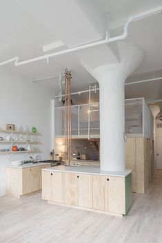 Galería de Bed-Stuy Loft / New Affiliates - 1 loft interieur multiplex wit strekmetaal