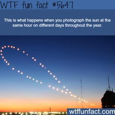 Photograph of the sun at the same hour on different days - WTF fun fact