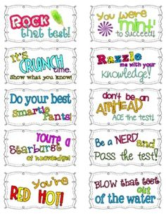 Motivational Testing Notes - Cute Freebie from Ginger Snaps!