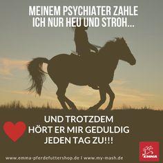 MEINEM PSYCHIATER ZAHLE ICH NUR HEU, STROH & MY MASH UND DU???????  LIKE EMMA  BESUCHE www.emma-pferdefuttershop.de