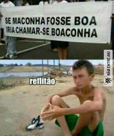 Boaconha