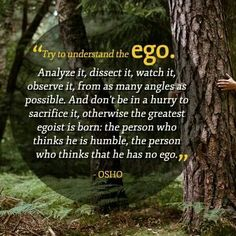 Understand the Ego