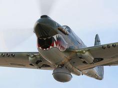 P-40 Warhawk #Flying #Tigers