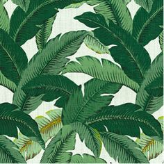 Interior trend: palm trees Wallpaper