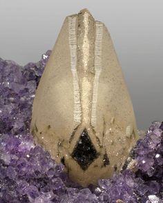 Calcite with Hematite on Amethyst crystals / La Bolsa, Uruguay / Mineral Friends Minerals And Gemstones, Crystals Minerals, Rocks And Minerals, Stones And Crystals, Natural Gemstones, Gem Stones, Crystal Magic, Amethyst Crystal, Beautiful Rocks