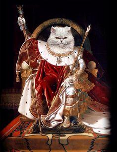 Portrait Renaissance, Renaissance Paintings, Custom Dog Portraits, Pet Portraits, Pet Dogs, Dog Cat, Cat Posters, Dog Memorial, Cat Art