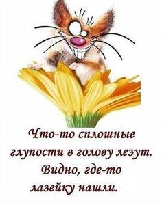Галина Богданова Прикольные картинки #демотиваторы #постеры