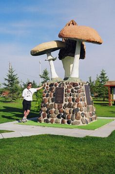 """These three mushrooms that form the statue is the logo for the Meleb-Park-Cumming School Reunion Committee. Mushrooms conjure up many happy memories of picking, cooking, eating; of family and friends; and somehow always Babas (Ukrainian for Grandmother) in the background comforting, sheltering, nourishing as in childhood."" —Rural Municipality of Armstrong and the Village of Meleb, as related by DMY, Big Things In Manitoba. http://www.bigthings.ca/manitoba/meleb.html #exploremb"