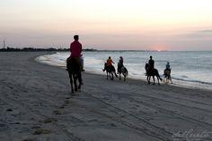 Who seeks findsIn Rio Grande do Norte, northeast Brazil, those looking for…