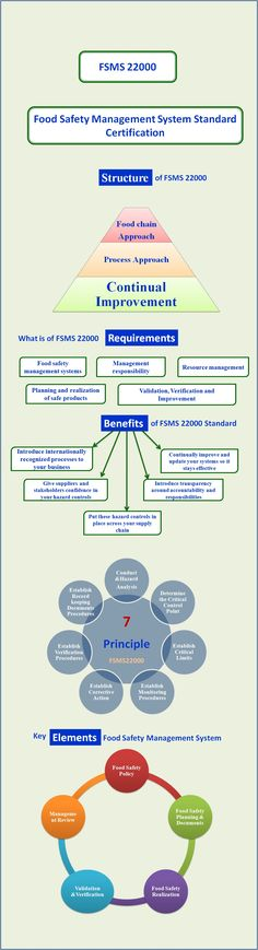 information about food safety management system implementation process structure requirements and elements