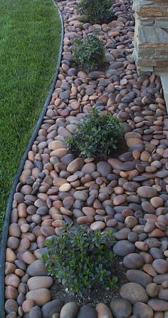 Fresh and beautiful front yard landscaping ideas on a budget (6)