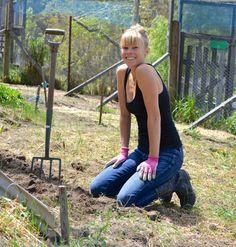 How to grow asparagus | planing asparagus crowns - Farm & Pretty