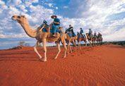I rode a camel at Uluru!