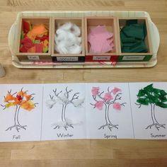 Montessori Science, Montessori Classroom, Preschool Curriculum, Montessori Toddler, Preschool Science, Classroom Activities, Toddler Activities, Preschool Activities, Teaching Kids