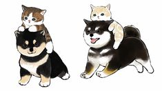 Crazy Cat Lady, Crazy Cats, Cute Cartoon Animals, Cute Animals, Kitty Drawing, Cute Cat Illustration, Basic Drawing, Kawaii Drawings, Disney Cartoons