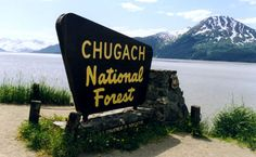 Chugach National Forest - the place where the heroine is bitten by a crazed werewolf.