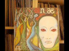 Niemen – Aerolit (winyl) full album