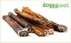 doggyloot - Let's spoil your dog with irresistible deals