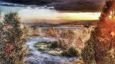 #ig_myshot #picturetokeep_nature #ig_diveneshots #sunset_madness #tree_brilliance #sunsets_and_sunrises #nofilter #show_us_nature #joyful_pics #lapland #finnishnature #artsunsets #finland #hugs_for_trees #loves_finland #nature_perfection #nature_brilliance #naturehippys #amateur_Shot #super_photosunsets #almostperfect_spring #nature_wizards #bestnatureshot #nature_archive #fotocatchers #natura_love_ #lovelyfinland