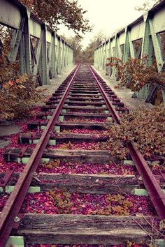 Train Track Bridge in my favorite color scheme Abandoned Train, Abandoned Places, Bonde, Old Trains, Vintage Trains, Secret Places, Train Tracks, Train Station, Pathways