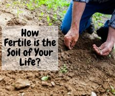 How Fertile Is The Soil Of Your Life?