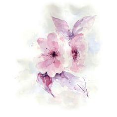 Hand drawn watercolor painting of delicate flowers. Beautiful flowers for greeting cards and textile design.Catalog Manager | Shutterstock