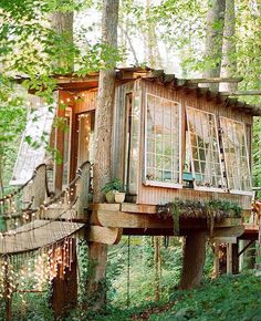 Tree house masters. Completely and totally awesome! The lights, wood design, and beautiful woodland forest scenery!