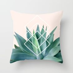 The agave plant in natural green and greenery tones with a diamond geometric design overlay on peachy pink background.