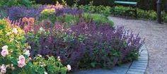 Bildresultat för trädgårdsrabatt