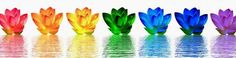 Chakras really are important to ourhealth on every level includingour spiritual and sexual well being. by Samantha Lucas