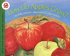 Cut open an apple for a simple preschool apple science lesson. Engage the five senses as you learn about how an apple grows. Perfect Fall science for kids!
