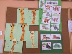 Dzikie zwierzęta/sawanna Animals, Animales, Animaux, Animal, Animais, Dieren