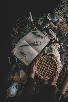 Balsamic Plum & Pluot Whole Wheat Lattice Pie   TermiNatetor Kitchen   A Midwest-based food and photography blog