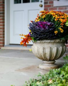 Cabbage, Mums, Pansies, Fall Leaves ... stunning fall urn