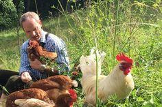 Ich habe ein tolles Projekt auf @startnext entdeckt. Schaut es euch an: Biobauernhof Eierreich Animals, Noodles, Egg, Animales, Animaux, Animal, Animais
