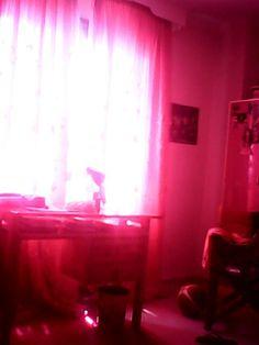 morning in my room
